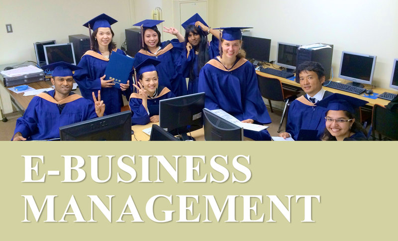 master thesis e business Master™s thesis an instrument to assess organizational change capabilities for e-business transformation by michael sullivan a thesis submitted to the faculty.